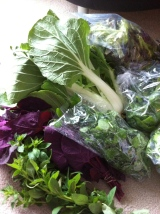 Lotsa Greens: My Second CSA Harvest